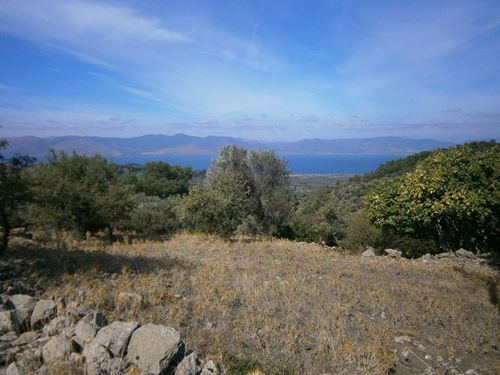 Picture of Land Plot - Lesvos - Polichnitos