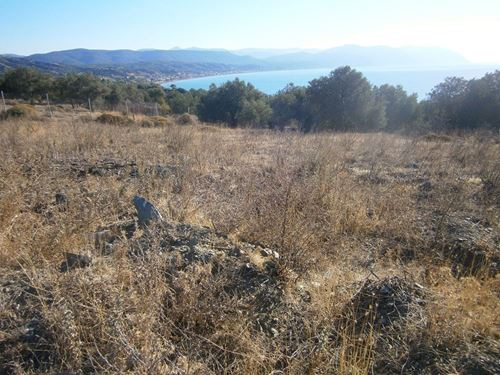 Picture of Land Plot - Lesvos - Vatera